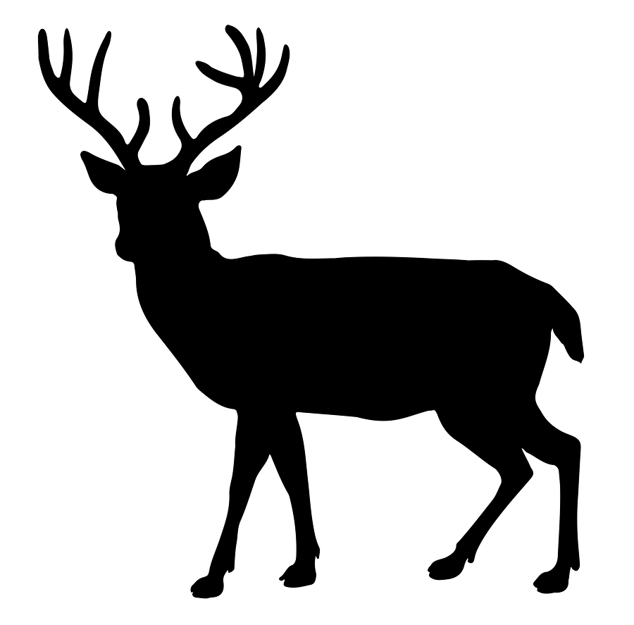 silhouette of a buck buck clipart silhouette buck silhouette transparent free silhouette a buck of