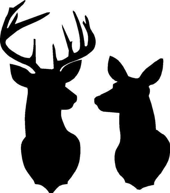 silhouette of a buck buck silhouette outline at getdrawings free download of a buck silhouette
