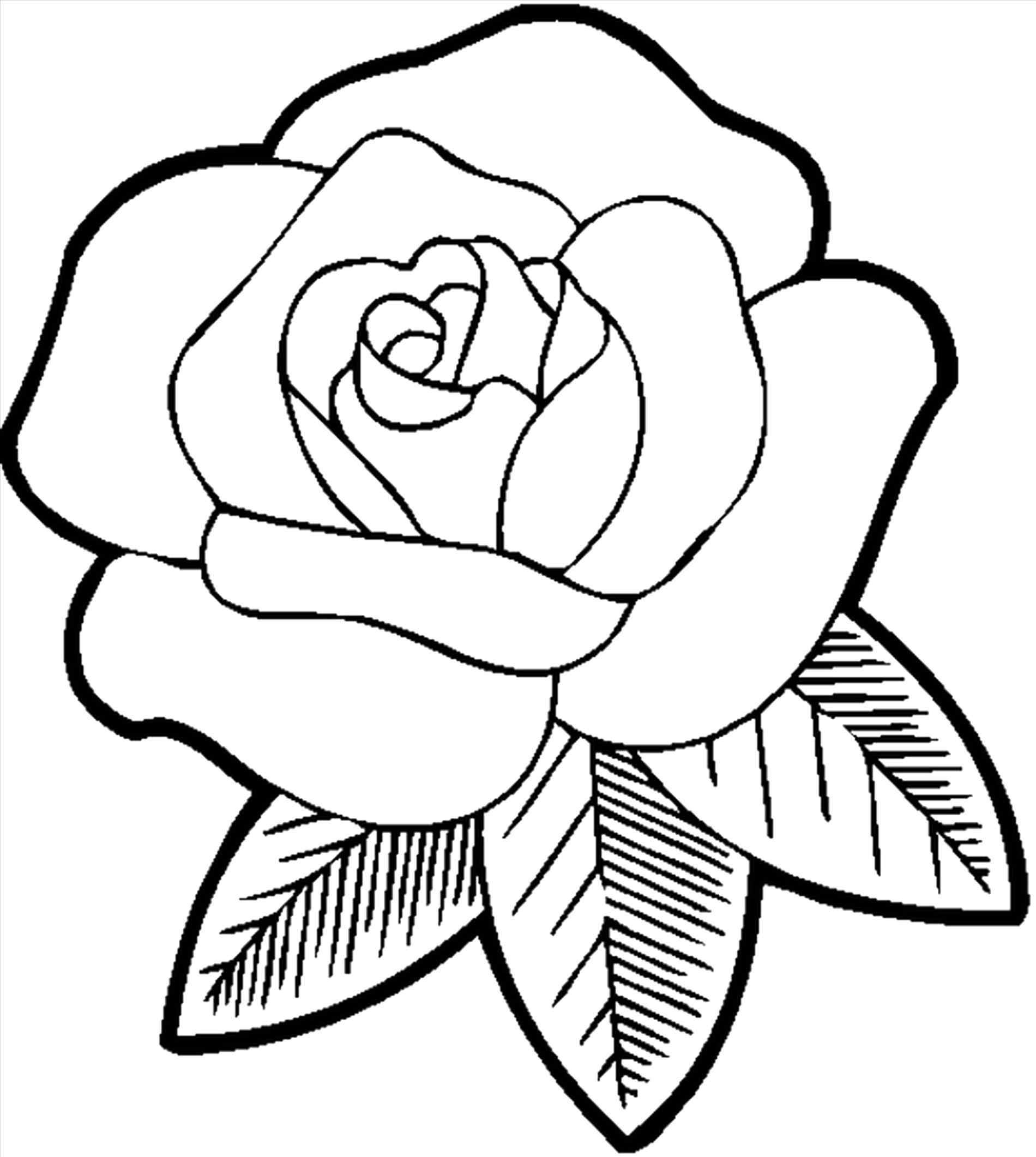 simple rose coloring pages flower coloring pages easy flower coloring pages pages rose simple coloring