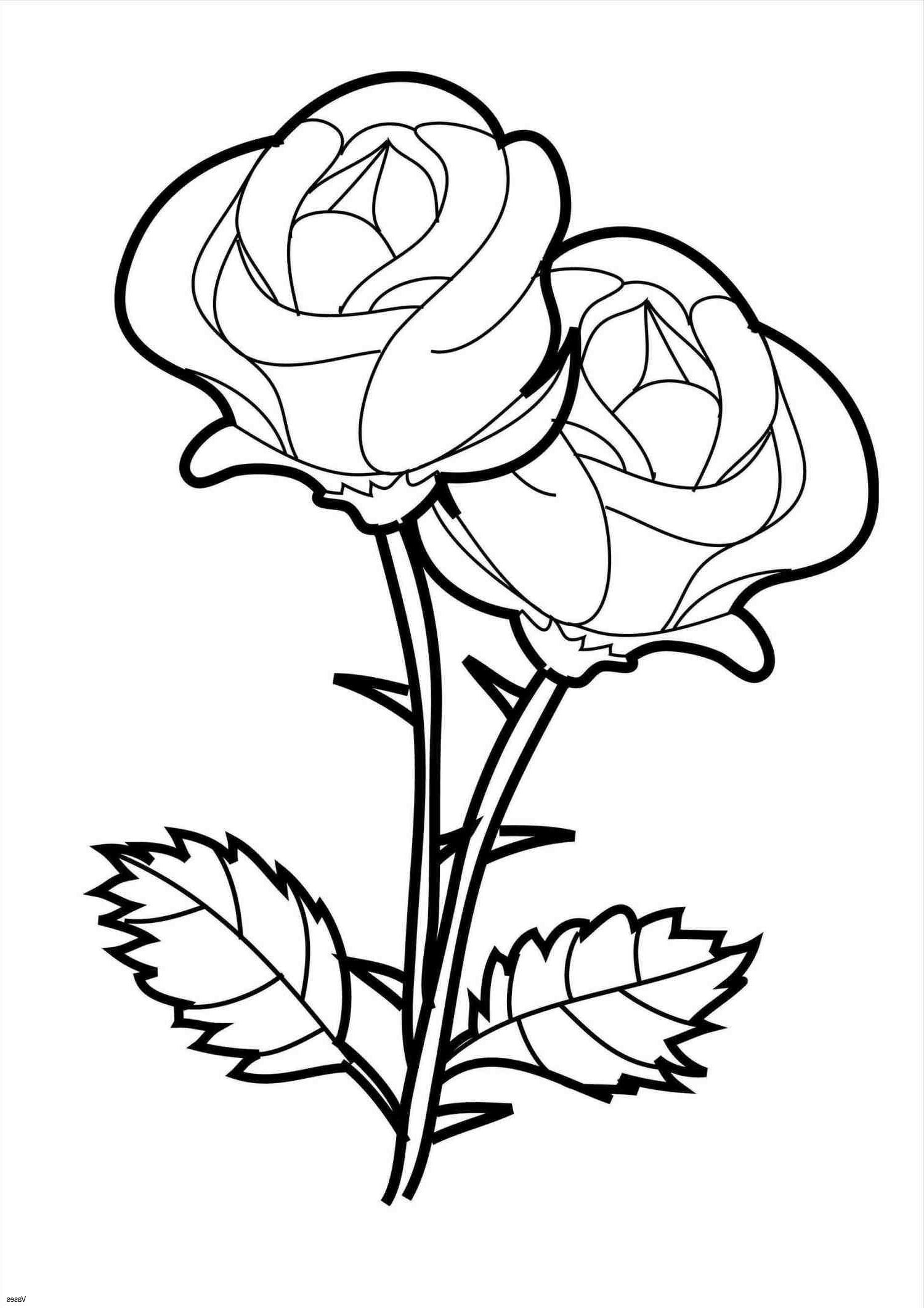 simple rose coloring pages free download roses easy design pages colouring pages pages simple coloring rose
