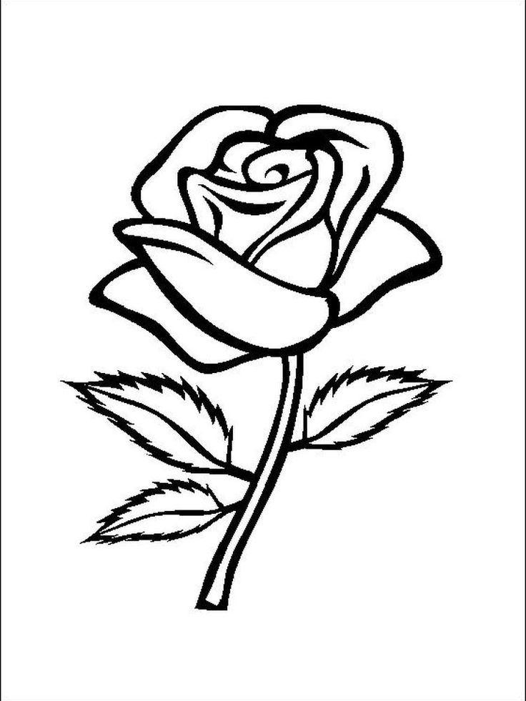 simple rose coloring pages free printable roses coloring pages for kids pages coloring simple rose