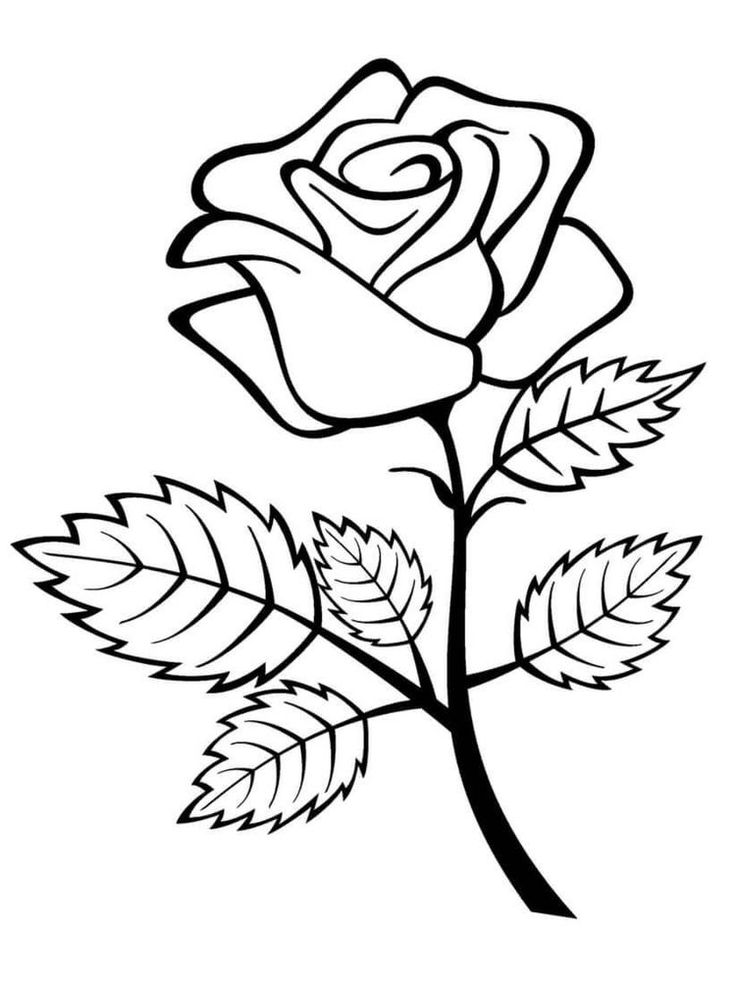 simple rose coloring pages how to draw a rose step by step easy clipart best pages rose coloring simple