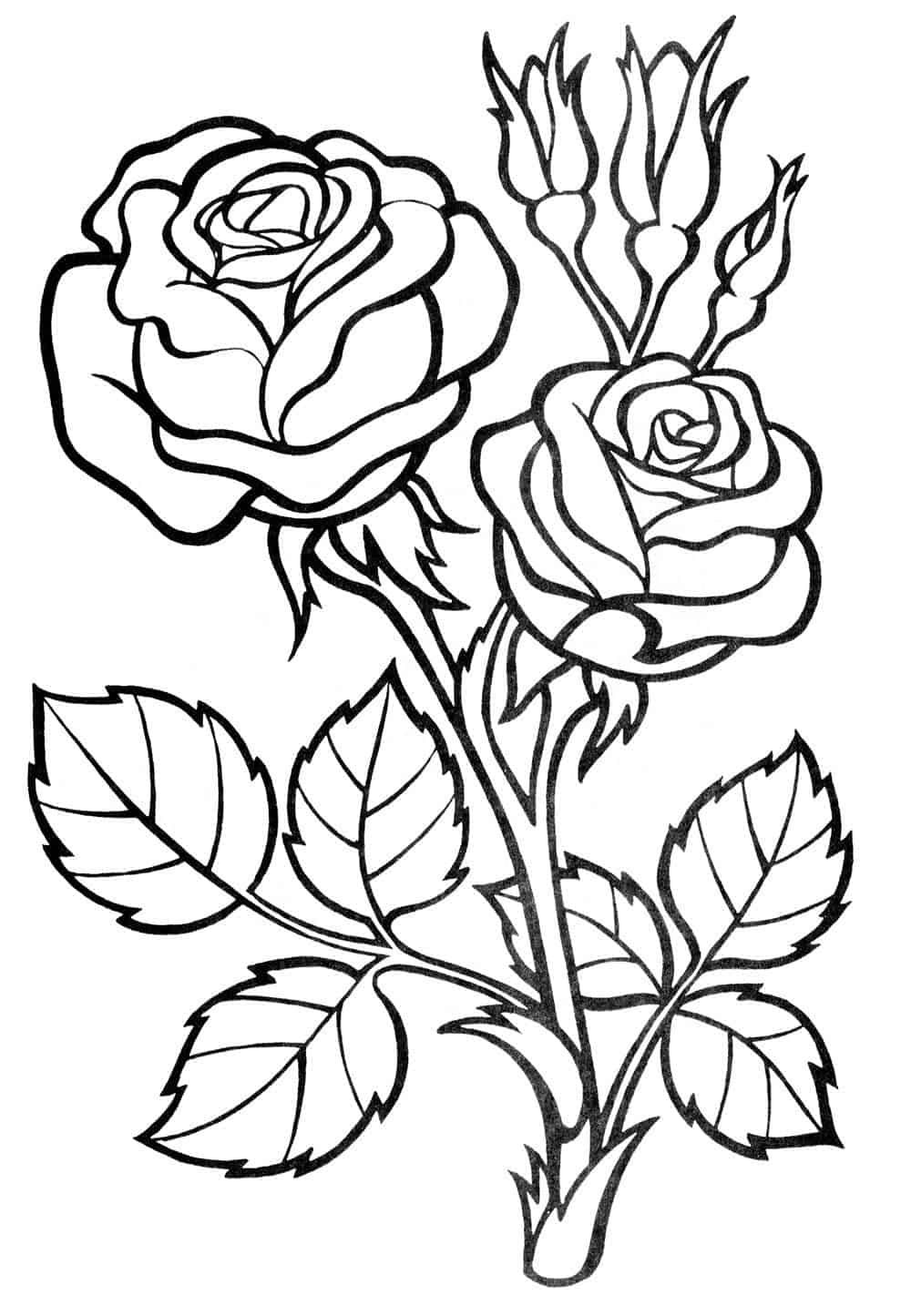 simple rose coloring pages rose coloring pages easy in 2020 rose stencil flower coloring simple pages rose