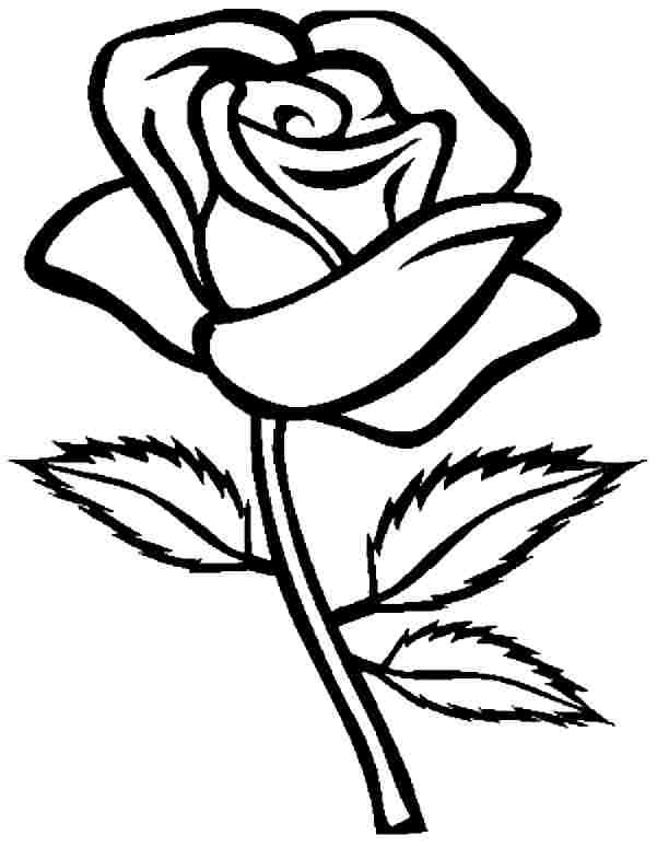 simple rose coloring pages simple rose drawing free coloring pages free printable simple rose pages coloring