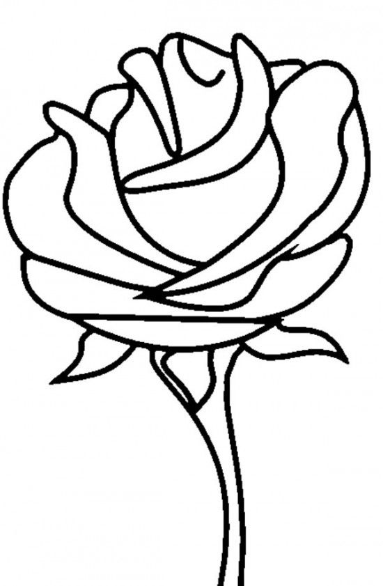 simple rose coloring pages simple rose outlines clipart best rose simple pages coloring