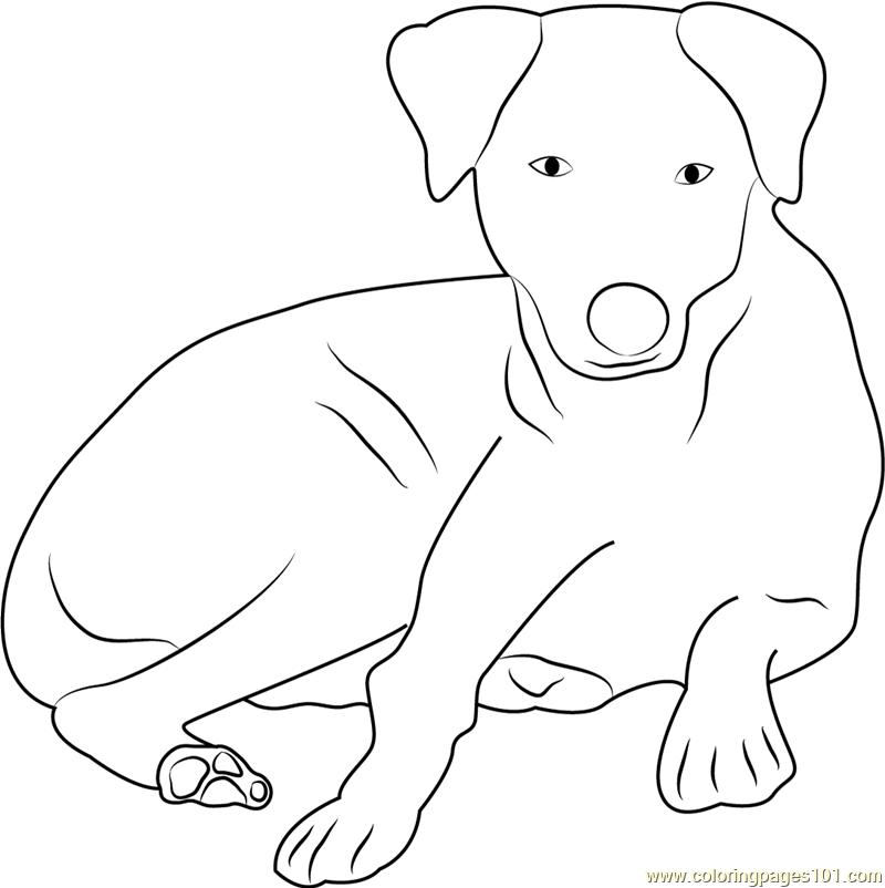 sitting dog coloring pages charming dog sitting coloring page free dog coloring sitting pages coloring dog