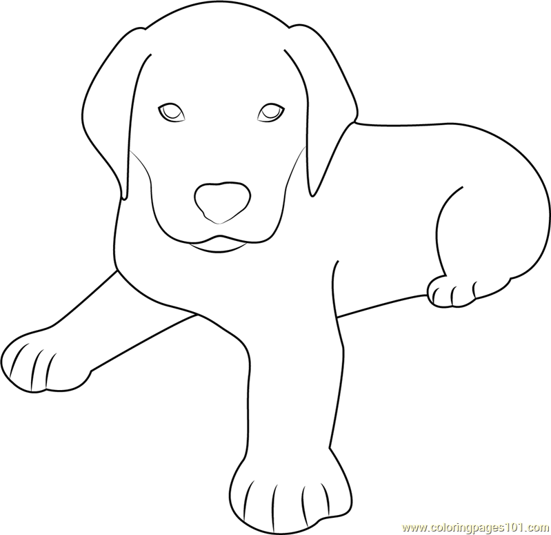 sitting dog coloring pages cute dog sitting coloring page free dog coloring pages sitting dog pages coloring