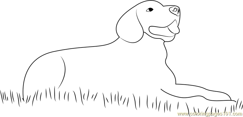 sitting dog coloring pages dog sitting in grass coloring page free dog coloring coloring pages dog sitting