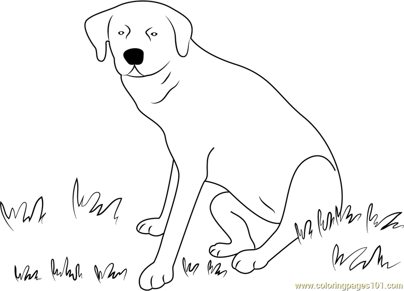 sitting dog coloring pages dog sitting on grass coloring page free dog coloring sitting coloring dog pages