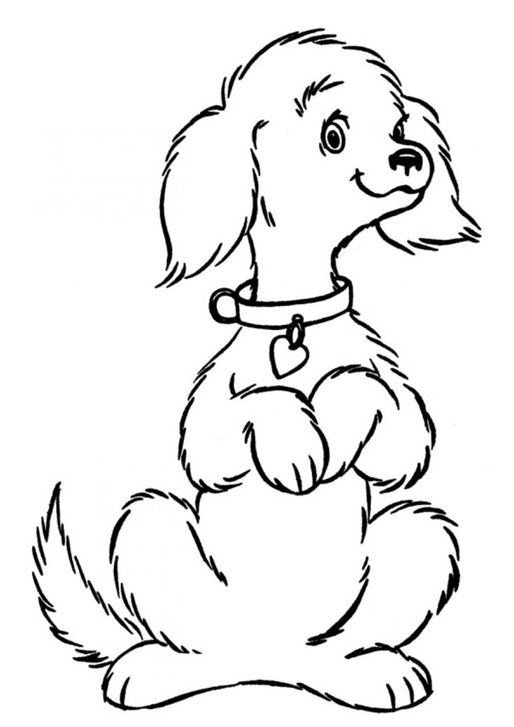 sitting dog coloring pages happy begging little dog in 2020 dog coloring page sitting pages coloring dog