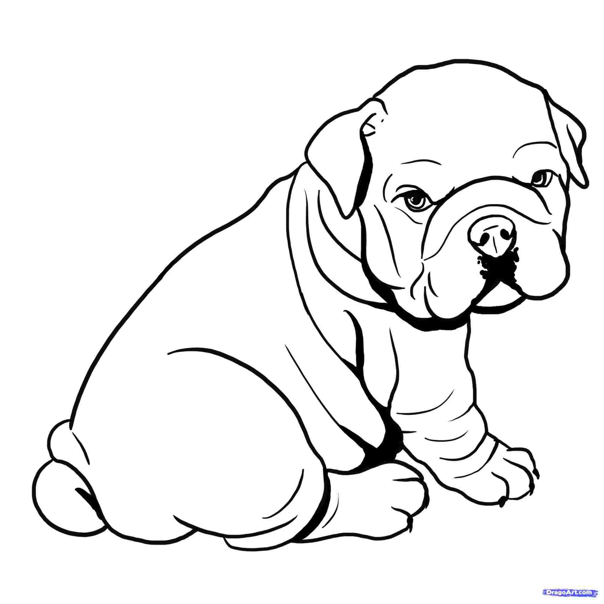sitting dog coloring pages sitting dog drawing free download on clipartmag pages coloring sitting dog