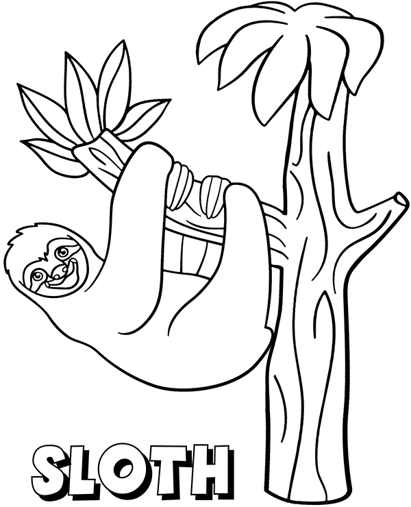 sloth coloring page sloth coloring page sloth coloring pages awesome page sloth coloring page
