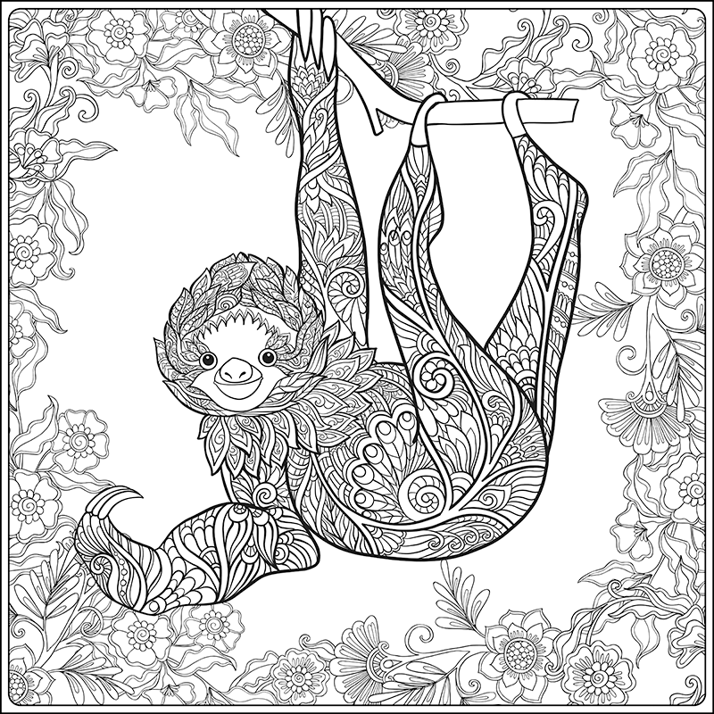 sloth coloring page three toed sloth coloring pages at getcoloringscom free sloth coloring page