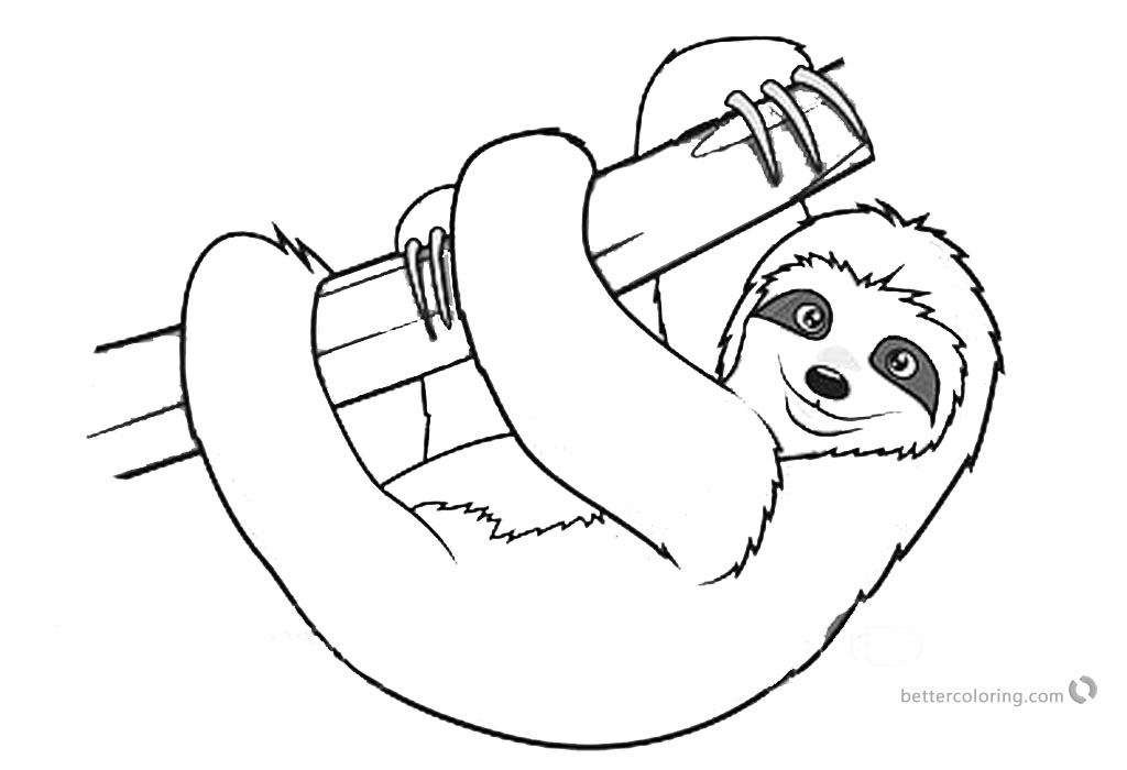 sloth pictures to print cute sloth in forest coloring page for adults sloth pictures to print