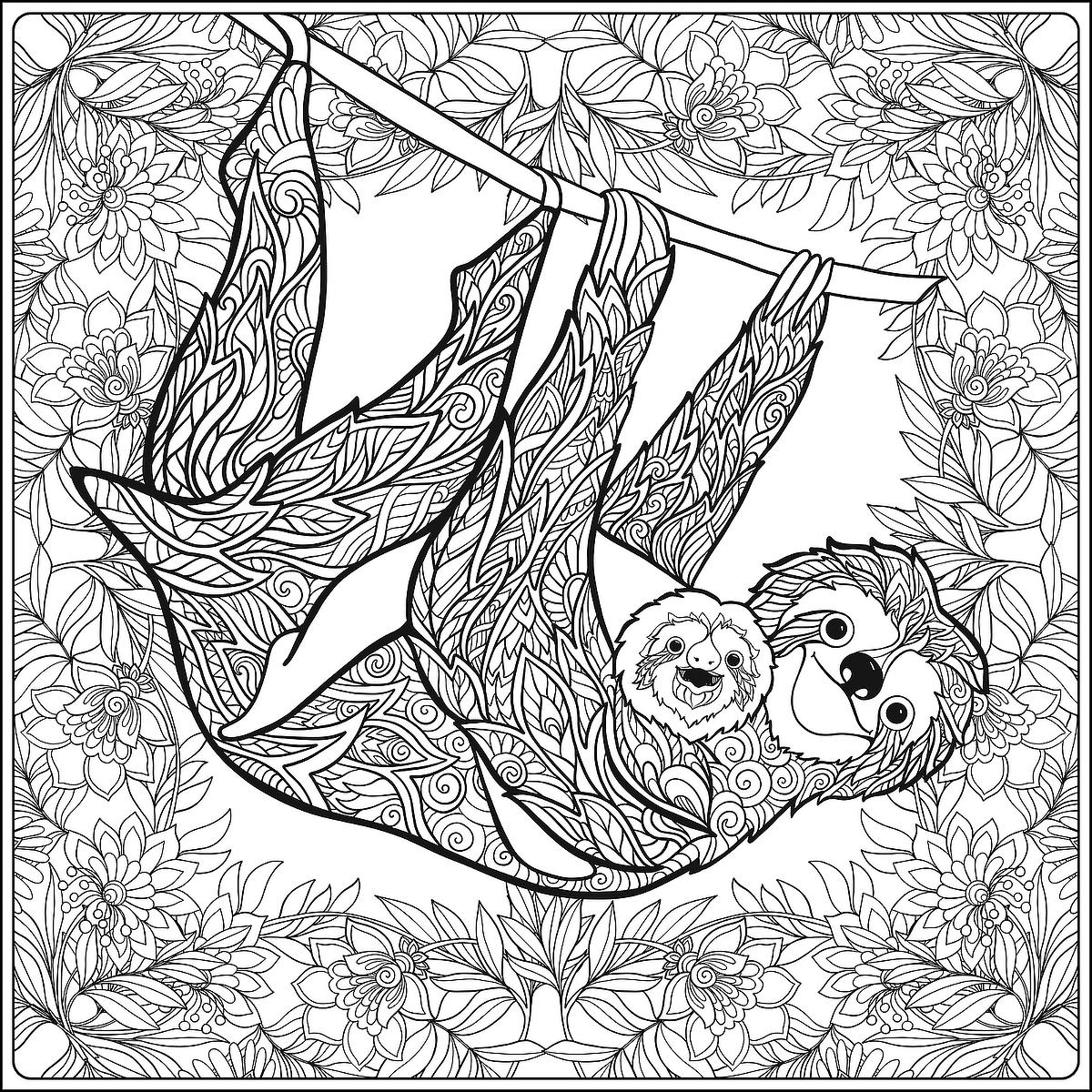 sloth pictures to print sloth coloring pages realistic three toed sloth free sloth print pictures to