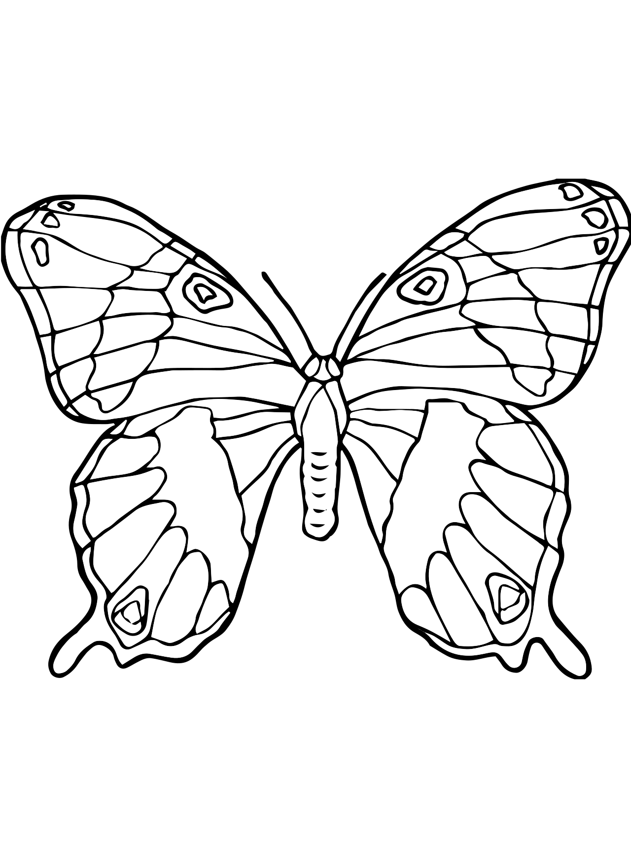 small butterfly coloring pages butterfly my coloring land pages butterfly coloring small