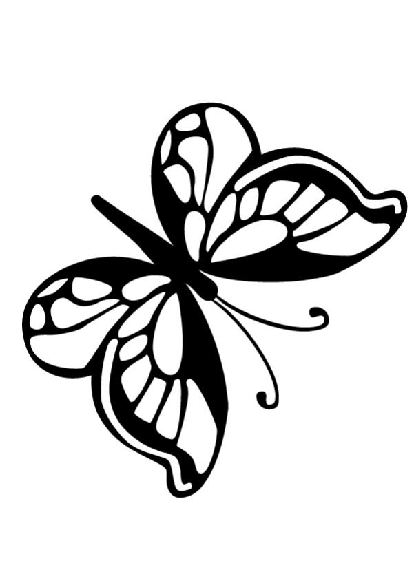small butterfly coloring pages cartoon butterfly images coloring home small butterfly pages coloring