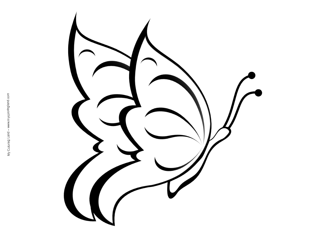 small butterfly coloring pages free cartoon butterfly images download free clip art small pages butterfly coloring