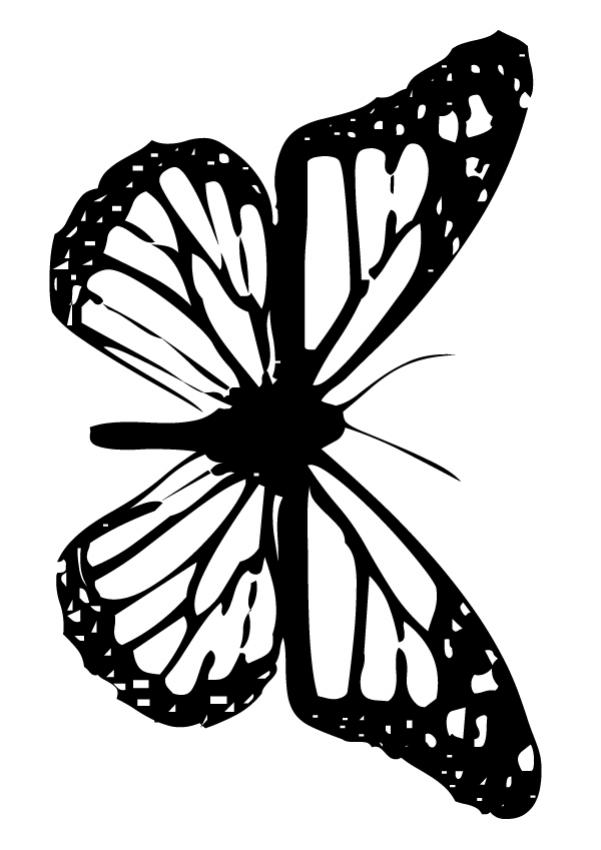 small butterfly coloring pages free printable butterfly colouring pages in the playroom pages small coloring butterfly 1 1