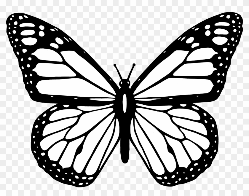 small butterfly coloring pages redirecting to httpwwwsheknowscomparentingslideshow coloring small pages butterfly