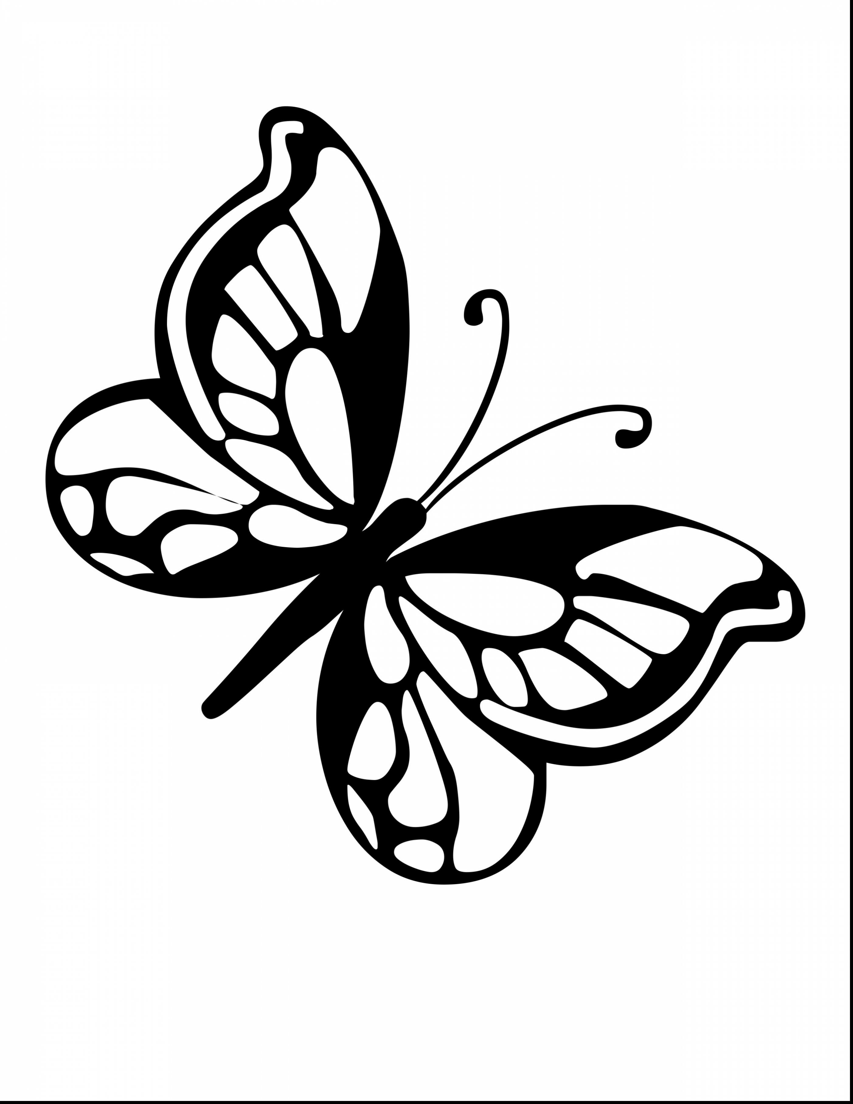 small butterfly coloring pages small butterfly coloring pages hellokidscom butterfly small coloring pages