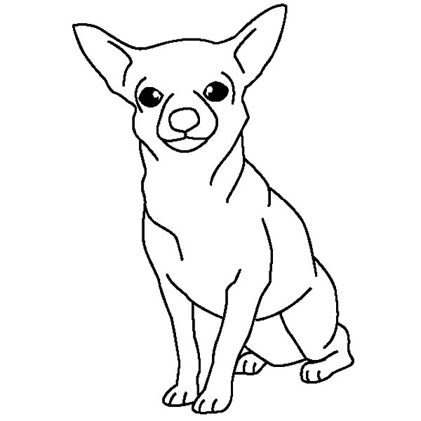 small puppy coloring pages cute dog drawing easy at getdrawings free download puppy small pages coloring