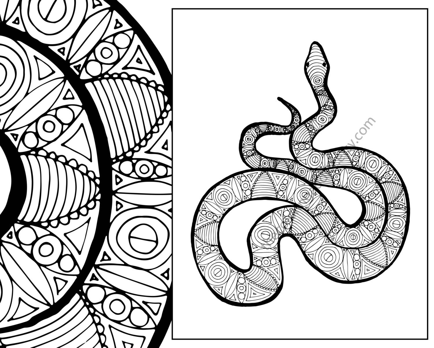 snake to colour in free printable snake coloring pages for kids snake to colour in