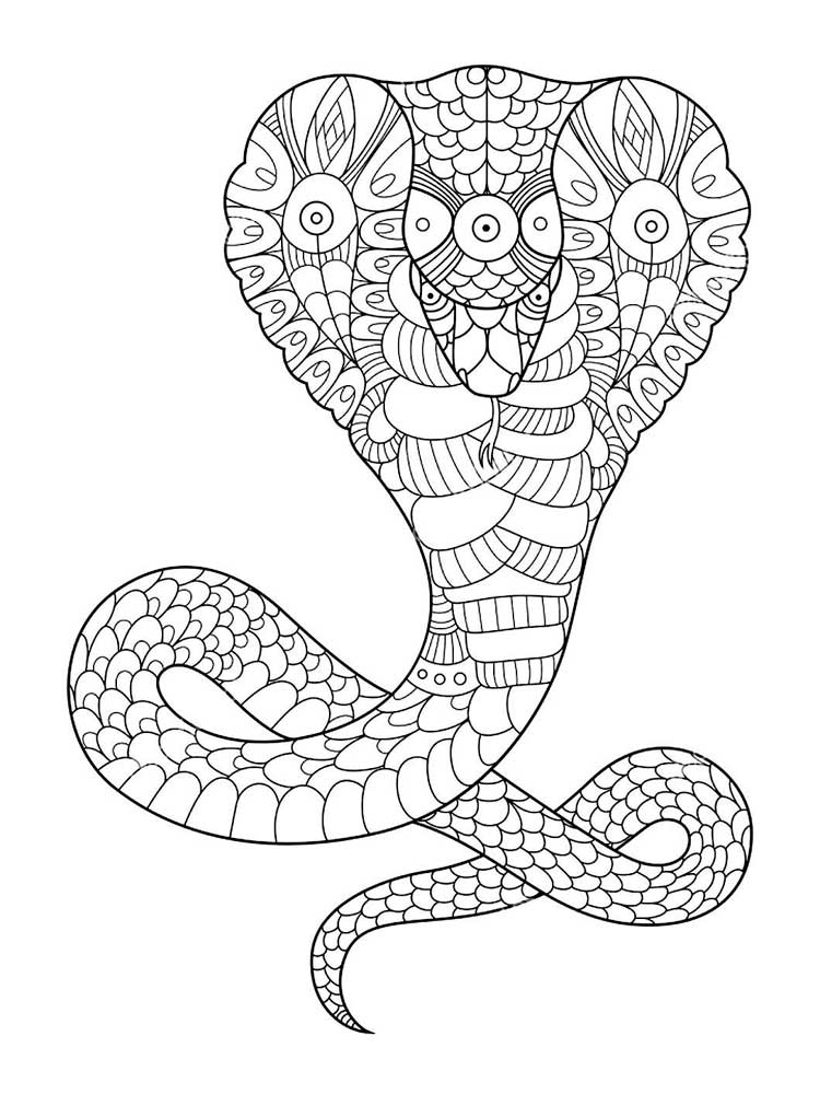 snake to colour in snake coloring pages 17 coloring kids colour to in snake