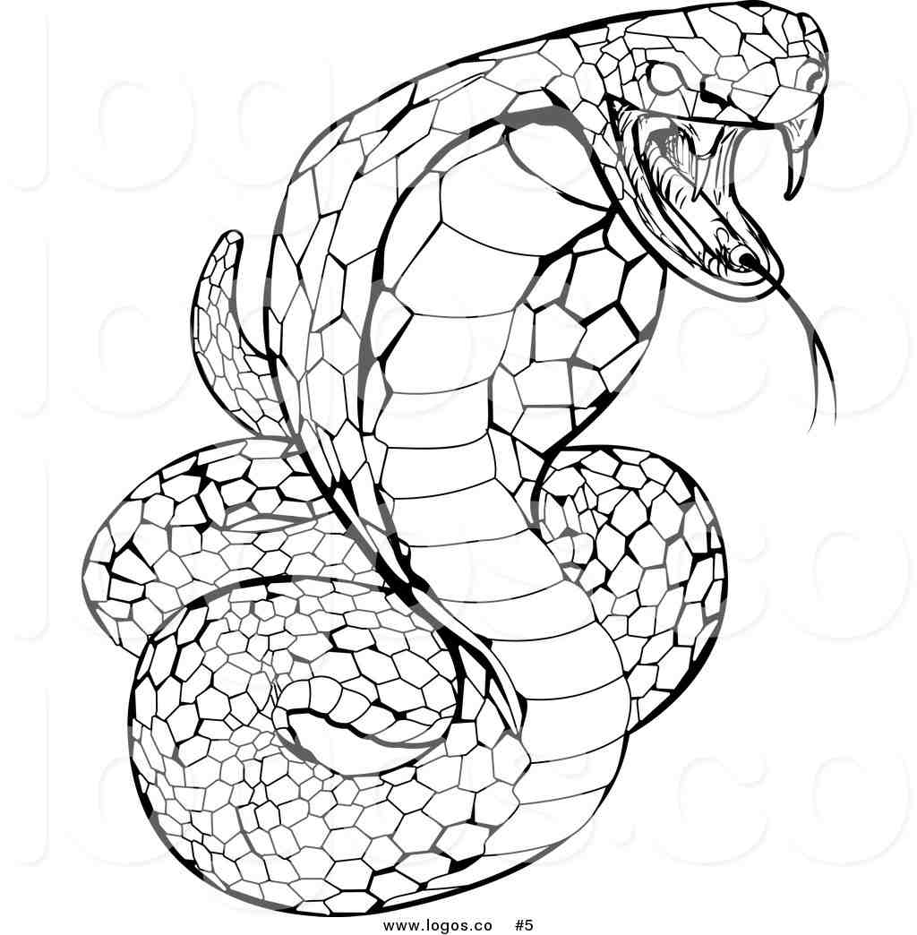 snake to colour in snake coloring pages snake to colour in