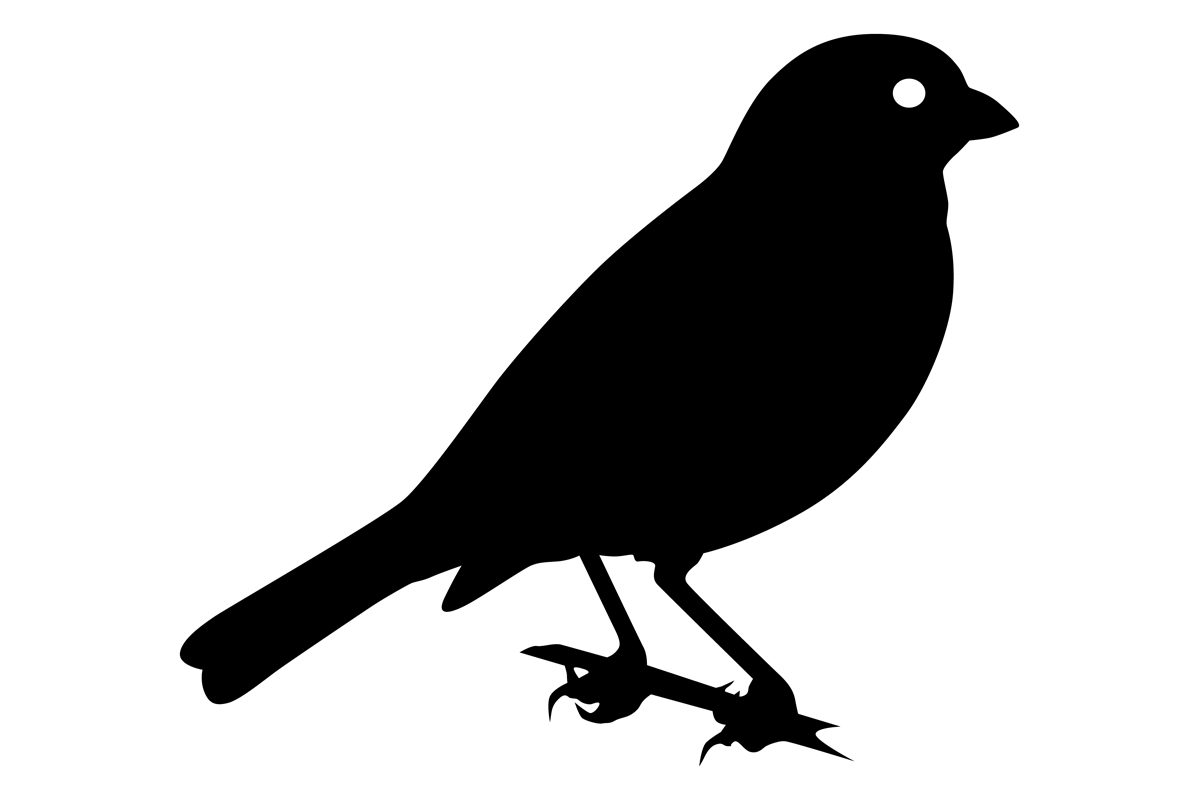 sparrowhawk silhouette flying sparrow silhouette at getdrawingscom free for silhouette sparrowhawk