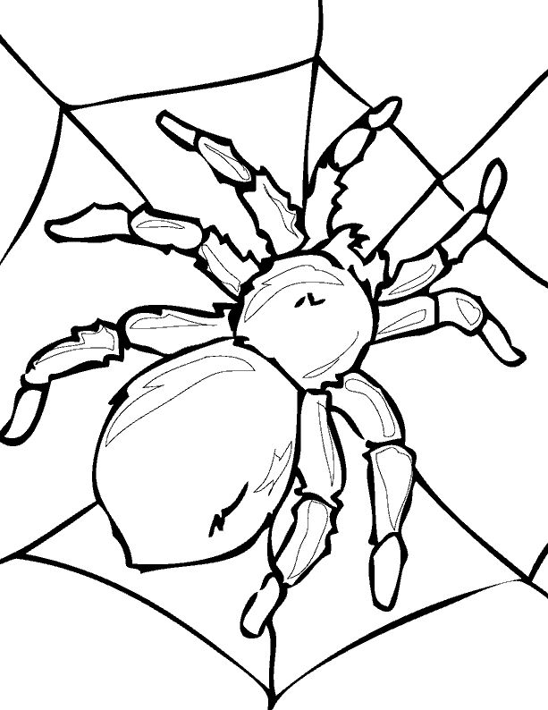 spinning top coloring page free online coloring pages thecolor top page coloring spinning