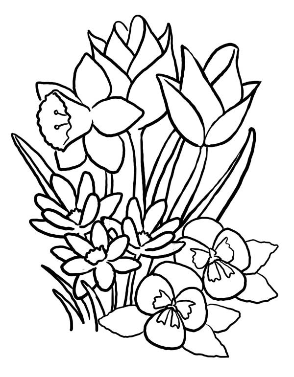 spring nature coloring pages coloring pages for kids spring new coloring pages kids for coloring nature spring pages