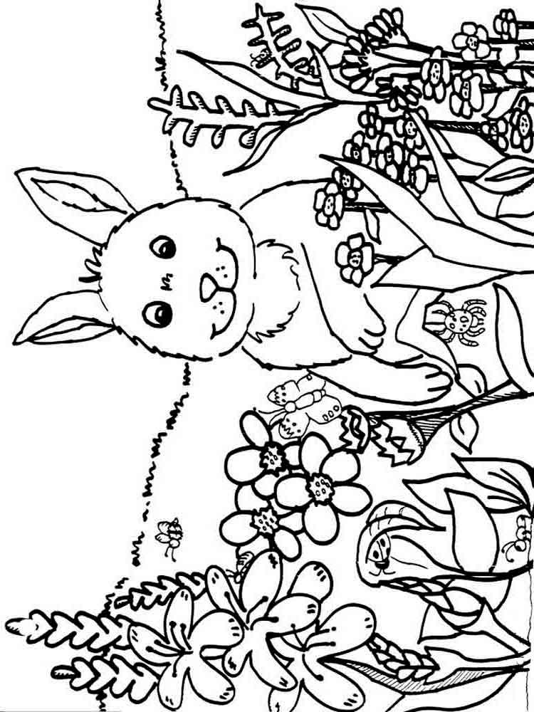 spring nature coloring pages rainbow coloring pages with images nature drawing for coloring spring nature pages