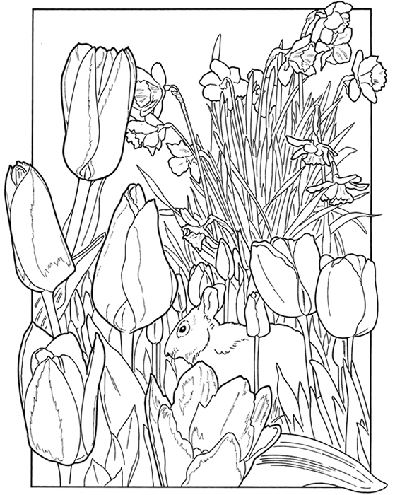spring nature coloring pages spring coloring pages for 5th graders google search spring coloring nature pages