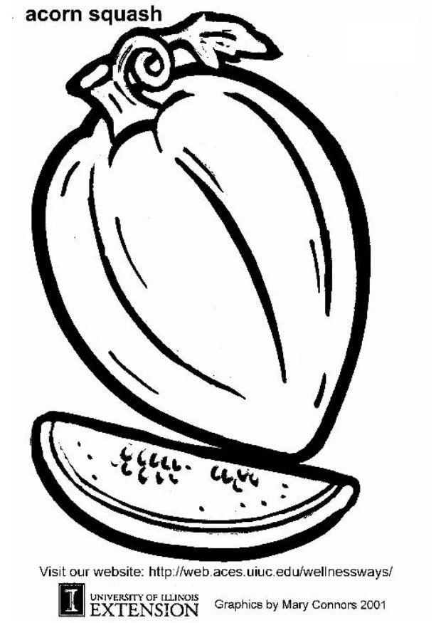 squash coloring page coloring page squash free printable coloring pages page squash coloring
