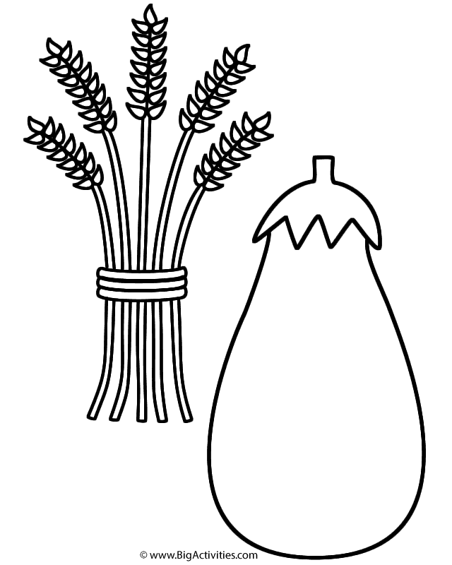 squash coloring page squash with wheat sheaf coloring page fruits and squash page coloring