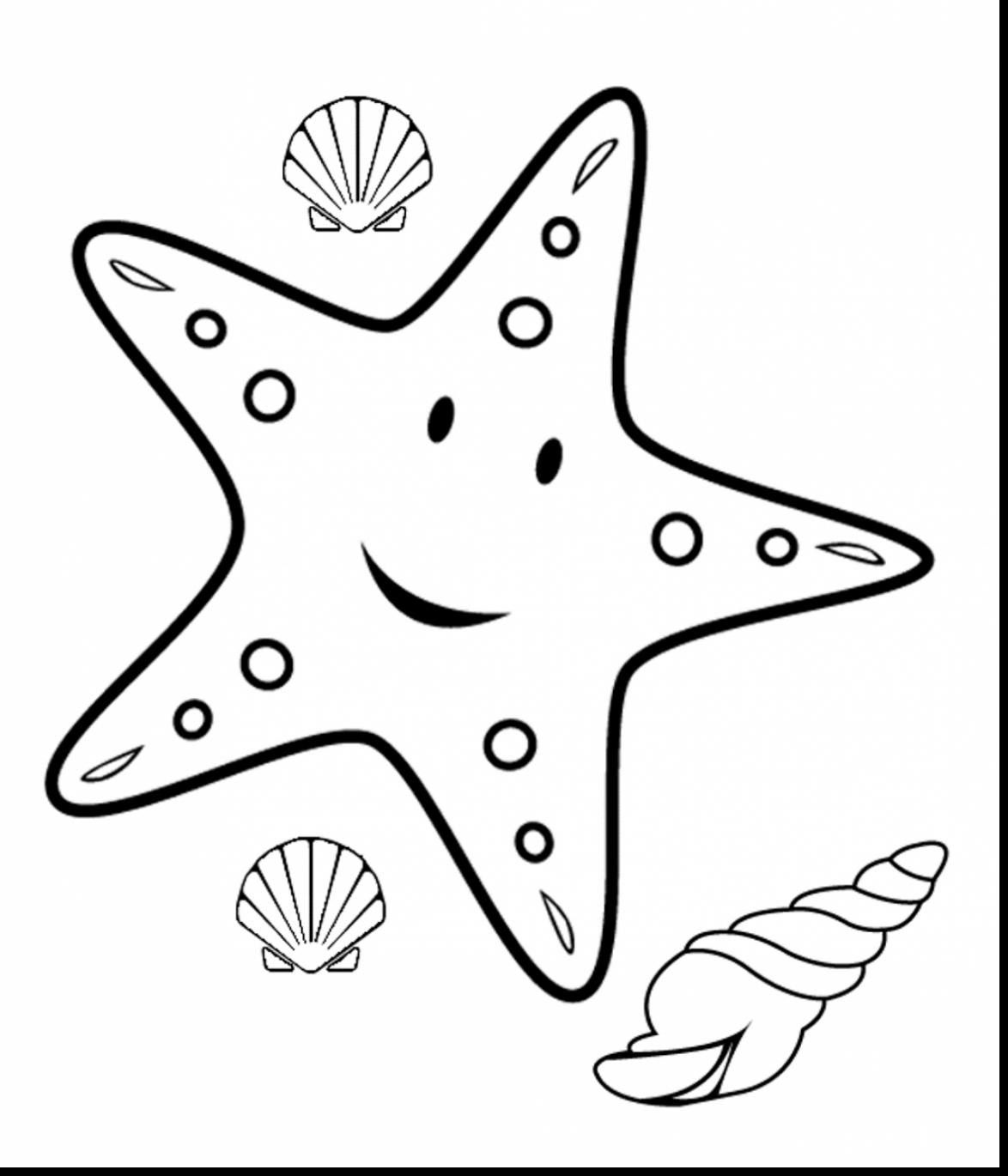 starfish to color printable starfish coloring pages for kids cool2bkids color to starfish