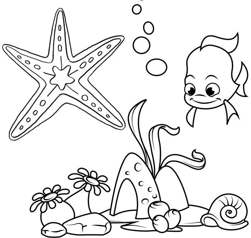 starfish to color printable starfish coloring pages for kids cool2bkids to color starfish 1 1