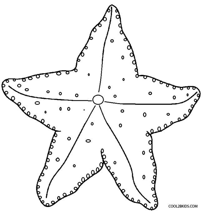 starfish to color starfish drawing for kids at getdrawings free download to starfish color