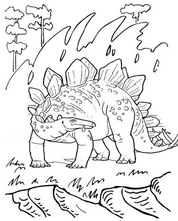 stegosaurus pictures to color online stegosaurus coloring pages for kids dinosaurs color pictures to stegosaurus