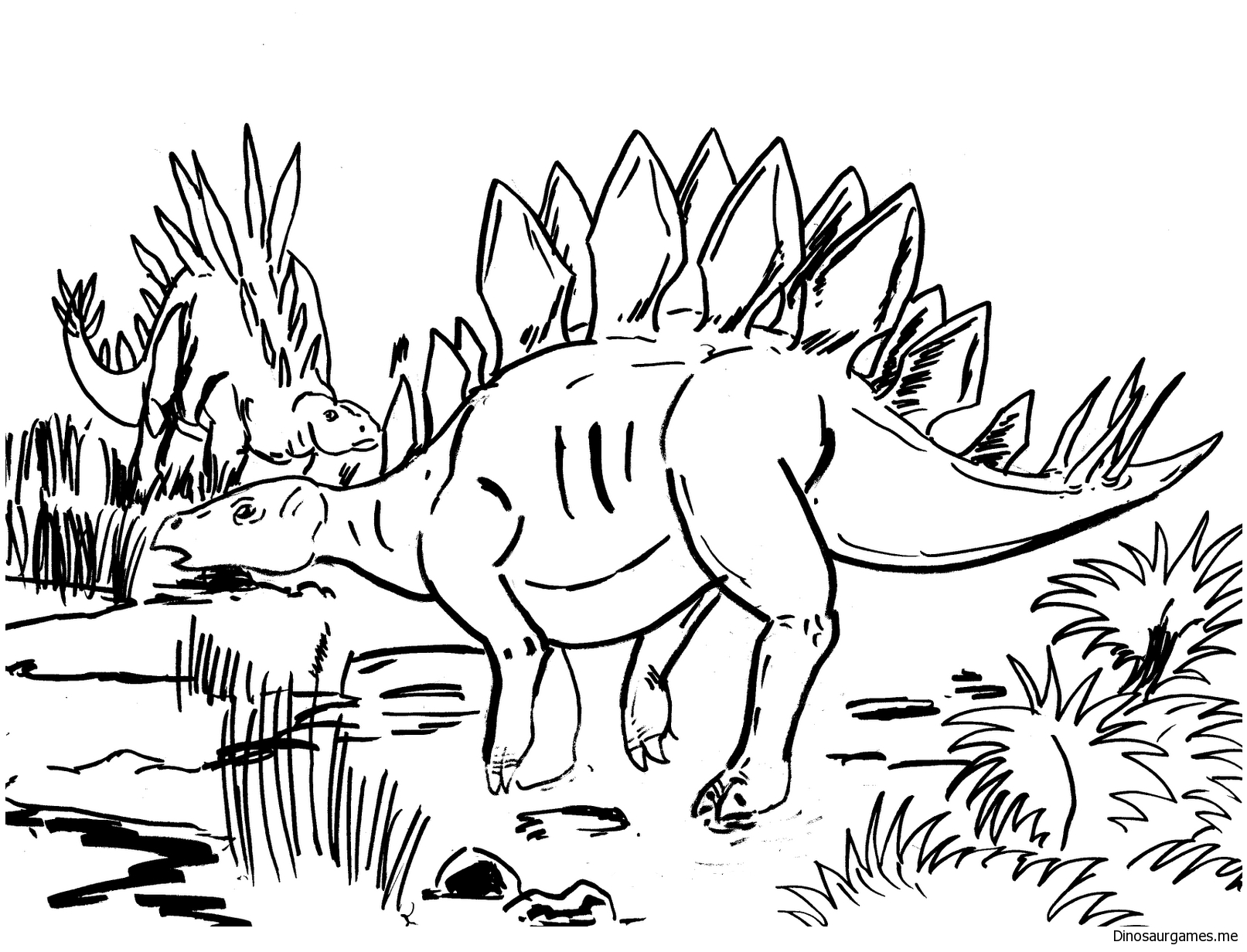 stegosaurus pictures to color stegosaurus coloring pages for kids dinosaur coloring pictures stegosaurus color to