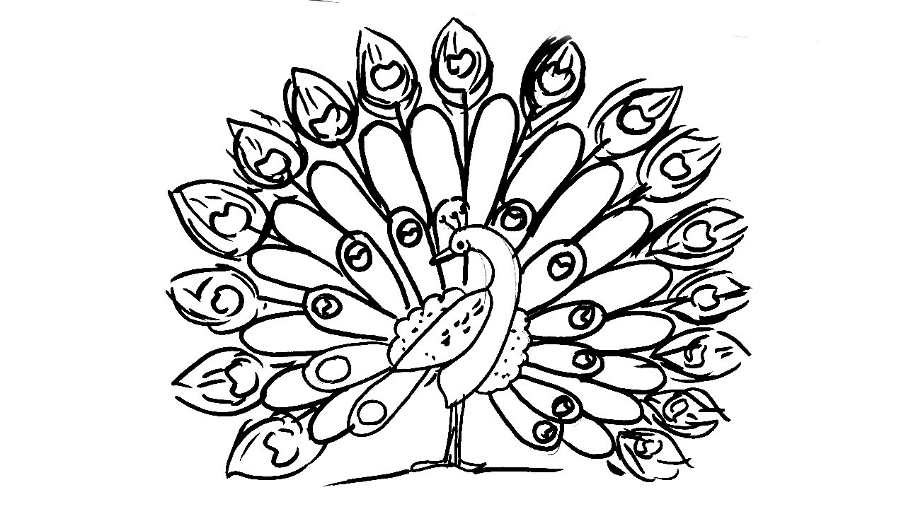step by step drawing of peacock how to draw a peacock step by step for kids youtube of drawing peacock step by step