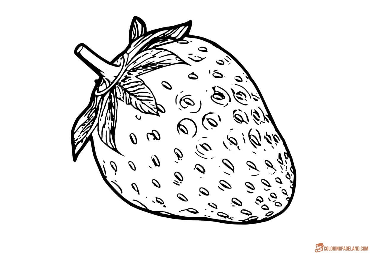 strawberry coloring image strawberry coloring pages coloring pages to download and image coloring strawberry