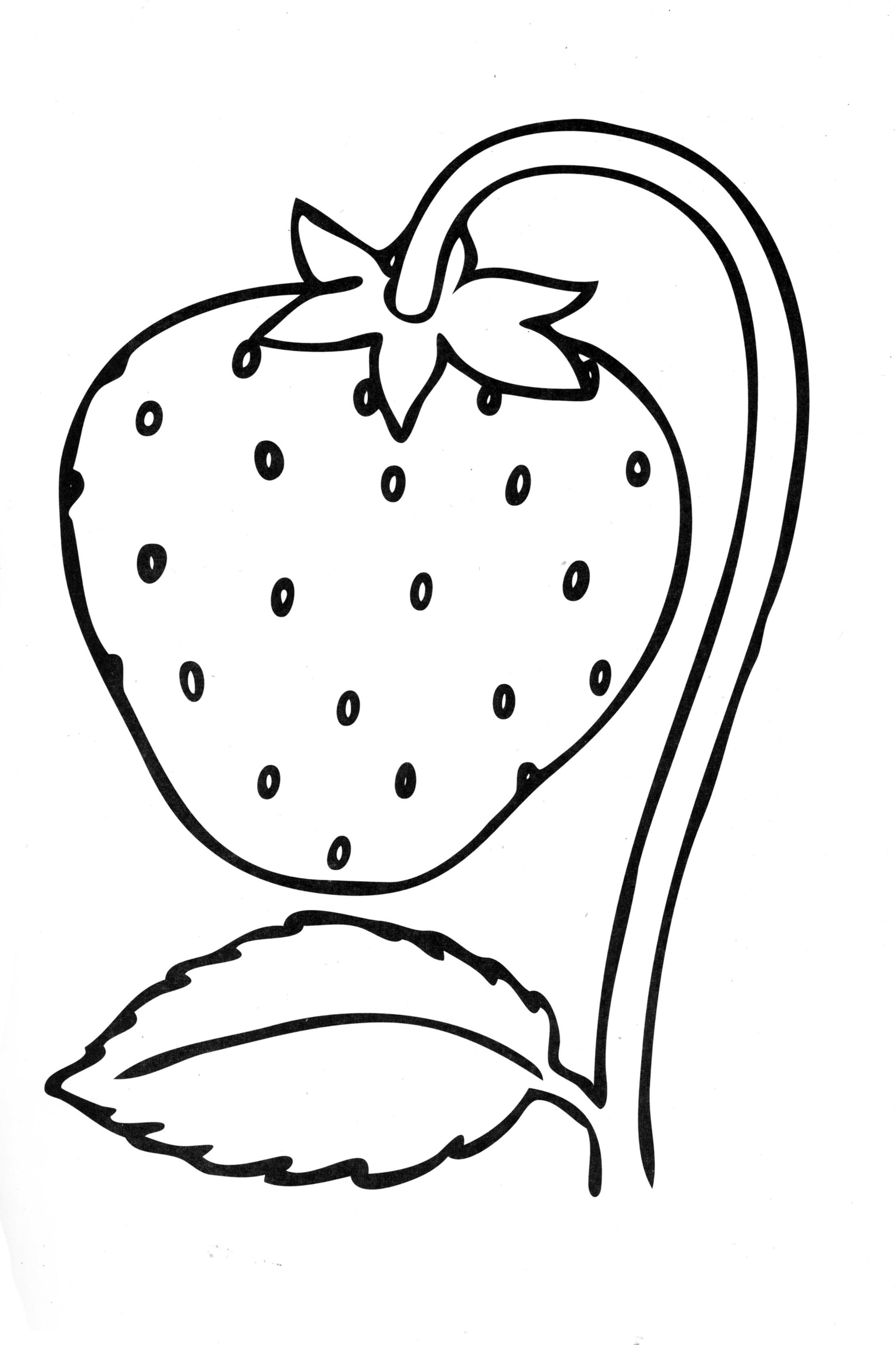 strawberry coloring image strawberry coloring pages download and print strawberry coloring strawberry image