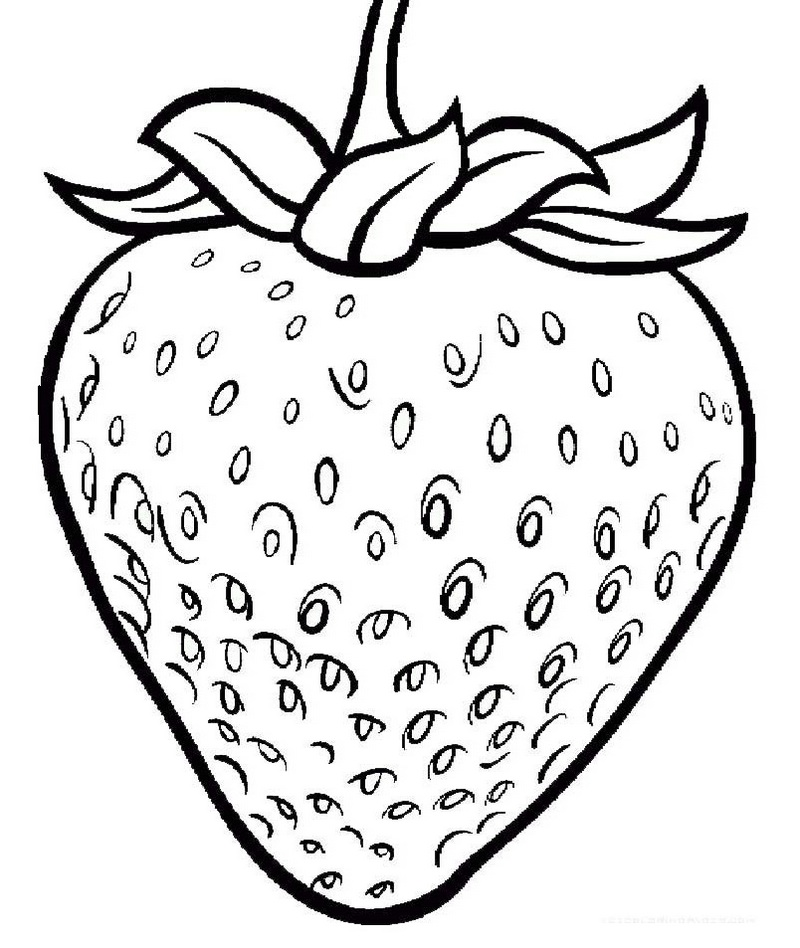 strawberry coloring image strawberry colouring page part 2 free resource for coloring strawberry image