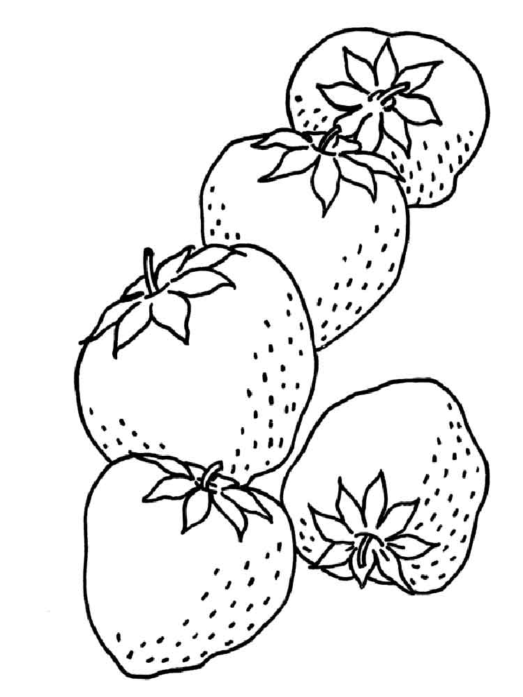 strawberry coloring image transparent strawberry plant png strawberry for coloring strawberry image coloring