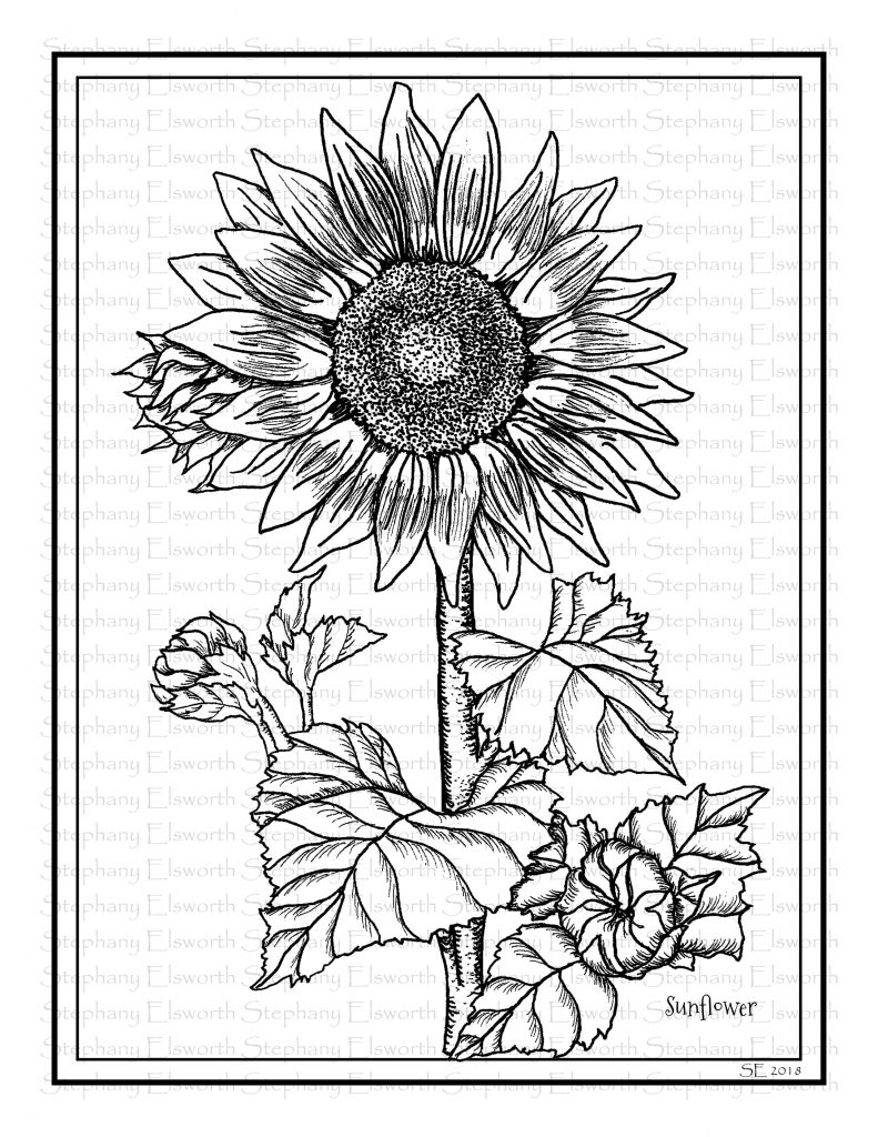sunflower coloring happy sunflower coloring page download print online coloring sunflower