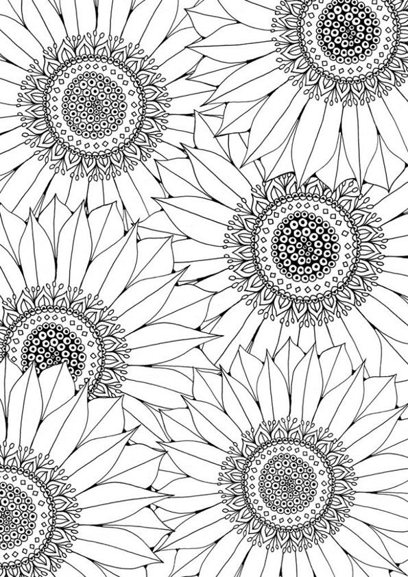 sunflower coloring sheets sunflower coloring pages for kids at getdrawings free coloring sunflower sheets