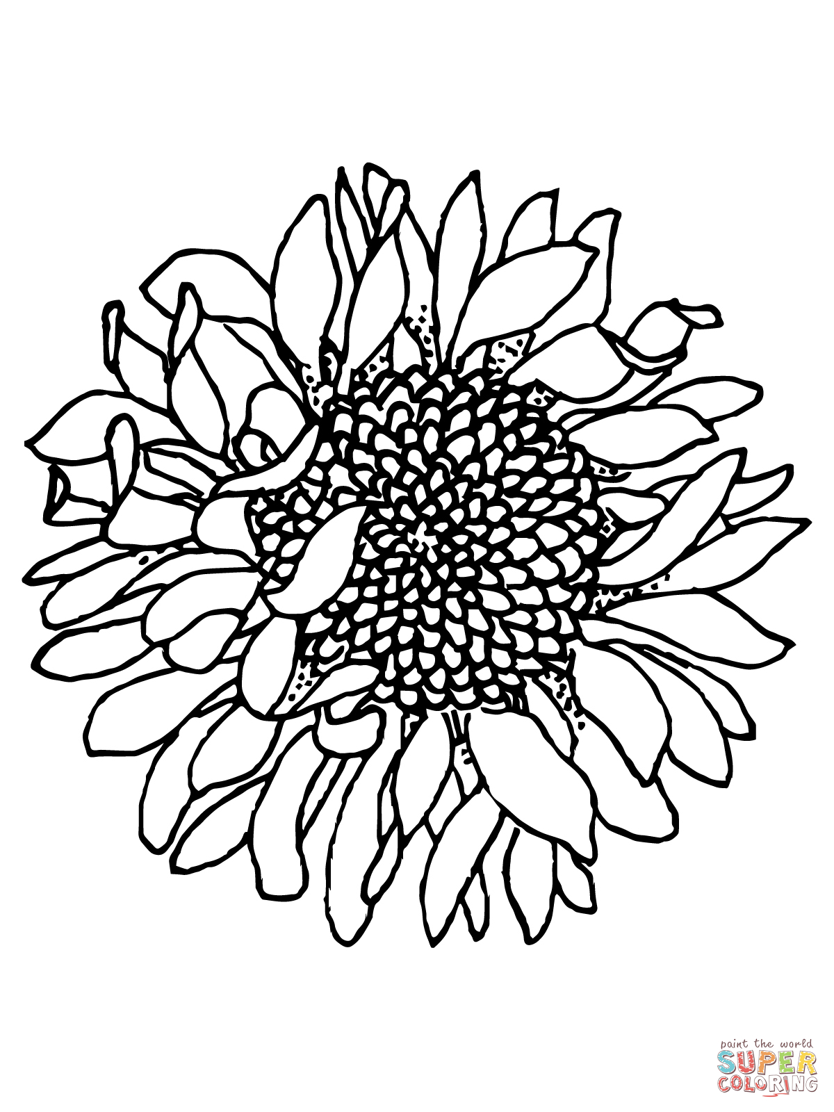 sunflower coloring sheets sunflower drawing simple at getdrawings free download sheets coloring sunflower