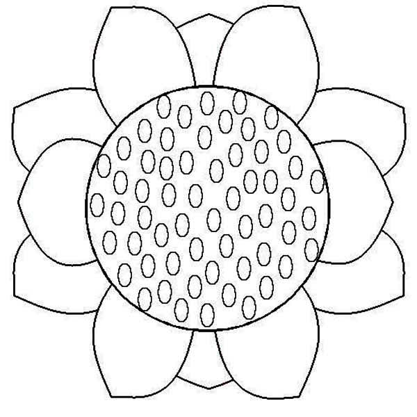 sunflower coloring simple sunflower free coloring page color with steph coloring sunflower